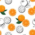 Seamless pattern with oranges on white background. Vector illustration of orange citrus and green leaves Royalty Free Stock Photo