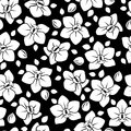 Seamless pattern with orchid flowers white and buds on a black background Royalty Free Stock Photography