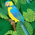 Seamless pattern with palm trees leaves and blue yellow macaw parrot ready to use as swatch Stock Photos