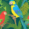 Seamless pattern with palm trees leaves and blue yellow and red blue macaw parrots ready to use as swatch Stock Image
