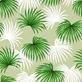 Seamless pattern with palms leaves. Decorative image tropical leaf of palm tree Livistona Rotundifolia. Background made Royalty Free Stock Photo