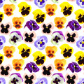 Seamless pattern of pansyes flowers abstract with motley isolated on white background close up studio photography Royalty Free Stock Images