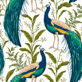 Seamless pattern with peacock, flowers and leaves. Royalty Free Stock Photo