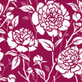 Seamless pattern with peonies Stock Photo