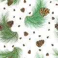 Seamless pattern with pinecones and realistic christmas tree green branches. Fir, spruce design or background for invitation