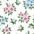 Seamless pattern with pink and blue roses rosebuds green leaves on a white background Royalty Free Stock Photography