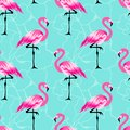 Seamless pattern with cute flamingo Royalty Free Stock Photo