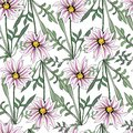 Seamless pattern of pink flowers and green leaves on a white background. African camomile. Simple ornament, texture for fabric,