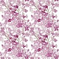 Seamless pattern. Pink flowers lilac. Vector background banner.