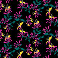 Seamless pattern. Pink flowers lonicera. Vector background.