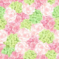 Seamless pattern with pink and green hydrangea flowers. Vector illustration. Royalty Free Stock Photo