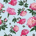 Seamless pattern with pink peonies on small polka dot background. Vector.