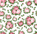 Seamless pattern with pink roses. Stock Images