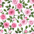 Seamless pattern with pink roses. Vector illustrat Royalty Free Stock Photo
