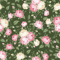 Seamless pattern with pink and white roses. Stock Image