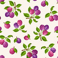 Seamless pattern with plums. Vector illustration. Royalty Free Stock Photo