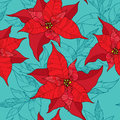 Seamless pattern with Poinsettia flower or Christmas Star in red on the turquoise background. Traditional Christmas symbol. Royalty Free Stock Photo