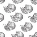 Seamless pattern Pomegranate fruit, berry. Organic nutrition healthy food. Engraved hand drawn vintage retro vector. Royalty Free Stock Photo