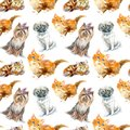 Seamless pattern of a pug dog,Yorkshire Terrier and ginger kitten.