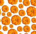 Seamless pattern with pumpkins. Vector illustratio Royalty Free Stock Image