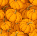 Seamless pattern with pumpkins. Vector illustratio Royalty Free Stock Photography