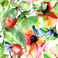 Seamless pattern with raspberry and flowers watercolor illustration Royalty Free Stock Image
