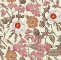 Seamless pattern. Realistic isolated flowers. Vintage background heliotrope hibiscus primavera hibisc Drawing engraving Vector Royalty Free Stock Photo