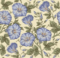 Seamless pattern. Realistic isolated flowers. Vintage baroque background. Petunia. Wallpaper. Drawing engraving. Vector