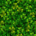 Seamless pattern with realistic Saint Patricks day shamrock leaves Royalty Free Stock Photo