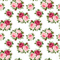 Seamless pattern with red and pink roses english rose buds leaves on a white background Royalty Free Stock Photos