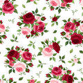 Seamless pattern with red and pink roses vintage english rose buds leaves Royalty Free Stock Images