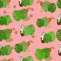 Seamless pattern with red tigers and white tigers with tropical monstera leaves. Pink background. Print on fabrics, on paper, Royalty Free Stock Photo