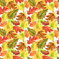Seamless pattern with red, yellow and green-yellow autumn leaves on colorful background. Endless artwork hand-drawn
