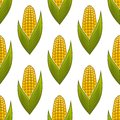 Seamless pattern of ripe golden corn on the cob with green leaves for background design Royalty Free Stock Photography