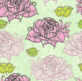 Seamless pattern with rose Royalty Free Stock Image