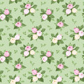 Seamless pattern with rose buds and leaves on green illustration of pink white a background Stock Photo