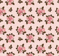 Seamless pattern with rose flowers Royalty Free Stock Photo