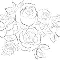 Seamless pattern. Roses Royalty Free Stock Photos