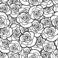 Seamless pattern with roses contours. Vector illustration. Royalty Free Stock Photo