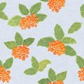 Seamless pattern with rowanberries rowan leaves and Stock Image