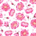 Seamless pattern with sakura or cherry blossom. Floral japanese ornament of blooming flowers Royalty Free Stock Photo