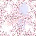 Seamless pattern with sakura. Hand drawn spring