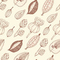 Seamless  pattern with seeds and seed pods in autumn colors. Royalty Free Stock Photo