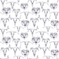 Seamless pattern with skulls of deer, bull, goat and sheep.