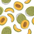 Seamless pattern with sliced japanese melons, orange melon or cantaloupe melon isolated on white background. Vector illustration Royalty Free Stock Photo