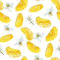Seamless pattern with  slices  of citrus fruit and blooming  flo
