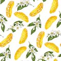 Seamless pattern with  slices  of citrus fruit and branches with