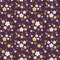 Seamless pattern with small flowers white and yellow and leaves on a purple background Royalty Free Stock Photography