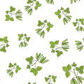 Seamless pattern with soybean Royalty Free Stock Photo
