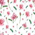 Seamless pattern with spring flowers and leaves. Hand drawn background. floral pattern for wallpaper or fabric. Flower rose in